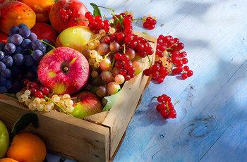 Steun jij de fruitpakketten in ons Kansenhuis?